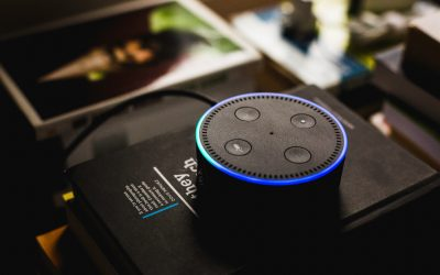 The Future for Voice Search & Feed Marketing